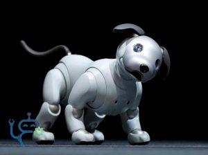 ربات های سگ aibo
